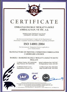 ISO 14001 2004